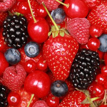 Kannenbeutel Beerentraum-Früchtetee