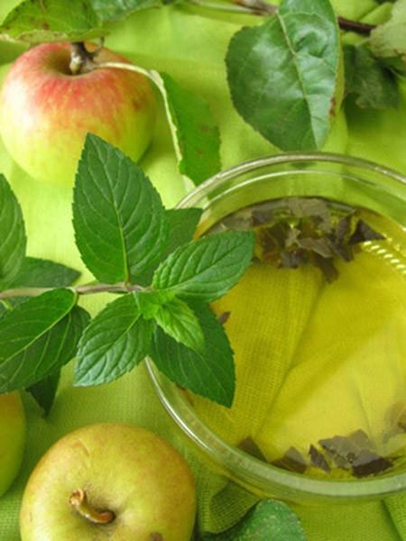 Apfel und die sieben Kräuter- Filterkette